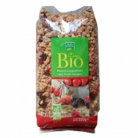 MUESLI FRUITS BIO 500G BF