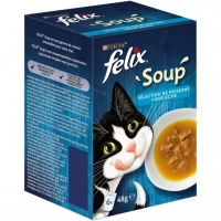 P6X48G FELIX'SOUP'POISSON